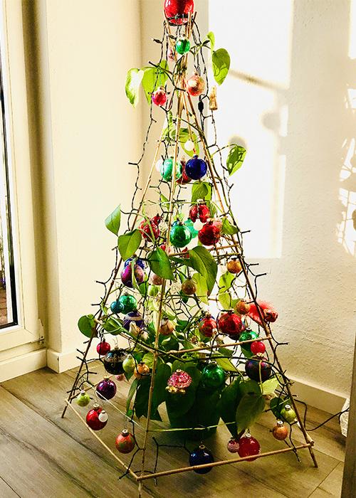 Nachhaltige Weihnachtsdeko