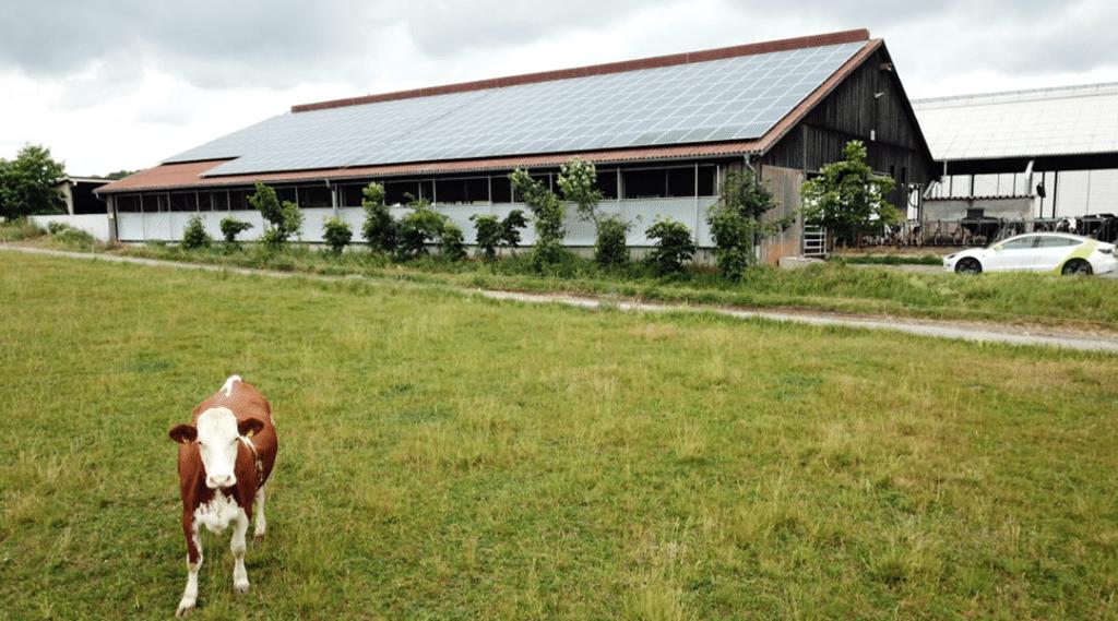 Photovoltaikanlage Krautheim